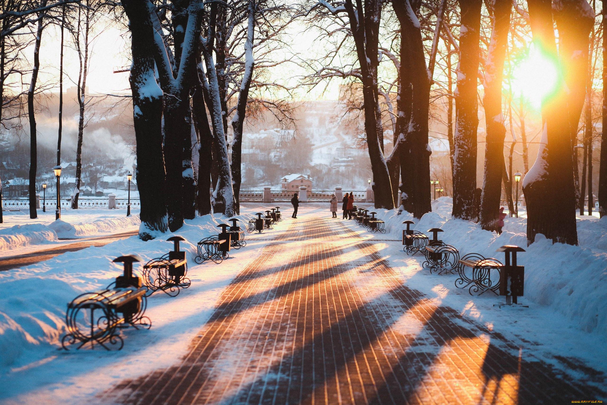 картинки зимний парк становится причиной появления
